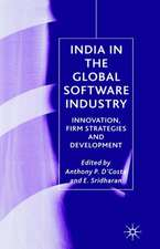 India in the Global Software Industry: Innovation, Firm Strategies and Development