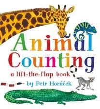 Horacek, P: Animal Counting