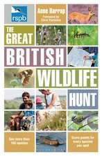 RSPB The Great British Wildlife Hunt