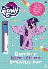 Bumper Wipe-Clean Activity Fun