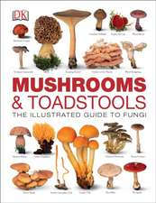 Mushrooms & Toadstools: The Illustrated Guide to Fungi