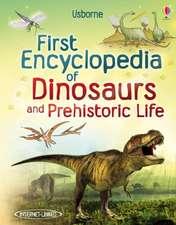 Taplin, S: First Encyclopedia of Dinosaurs
