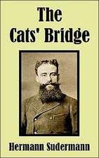 The Cats' Bridge
