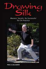 Drawing Silk:  Masters' Secrets for Successful Tai Chi Practice