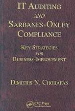 It Auditing and Sarbanes-Oxley Compliance:  Key Strategies for Business Improvement