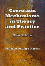 Corrosion Mechanisms in Theory and Practice, Third Edition:  Lean for the Information Age