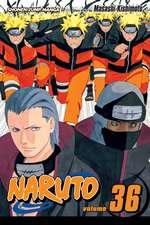 Naruto, Vol. 36: Naruto