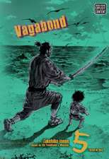 Vagabond, Vol. 5 (VIZBIG Edition): Glimmering Waves