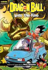 Dragon Ball, Volume 3:  Into the Fire