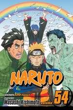 Naruto, Vol. 54: 54: Viaduct to Peace