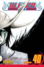 Bleach, Vol. 40