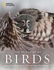 The Splendor of Birds: Art and Photography From National Geographic