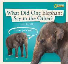 What Did One Elephant Say to the Other?:  A Book about Communication