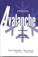 Avalanche: The 9 Principles for Uncovering True Wealth