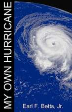 My Own Hurricane:  In a Nutshell