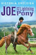 Joe and the Lightning Pony