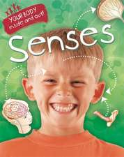 Your Body: Inside and Out: Senses
