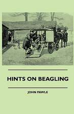 Hints on Beagling:  Pop-Up Animals