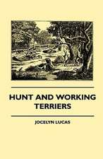 Hunt and Working Terriers:  Pop-Up Animals