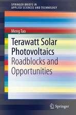 Terawatt Solar Photovoltaics: Roadblocks and Opportunities