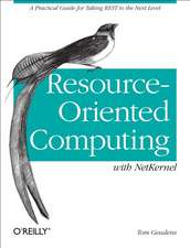 Resource–Oriented Computing with NetKernel