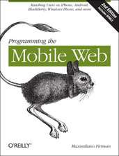 Programming the Mobile Web 2e