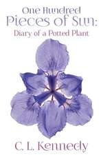 One Hundred Pieces of Sun:  Diary of a Potted Plant