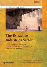 The Extractive Industries Sector:  Essentials for Economists, Public Finance Professionals, and Policy Makers