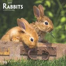 Rabbits 2019 Square Wall Calendar