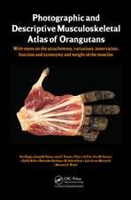 Photographic and Descriptive Musculoskeletal Atlas of Orangutans
