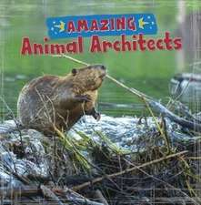 Amazing Animal Architects
