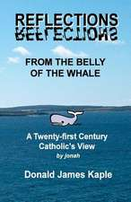 Reflections from the Belly of the Whale