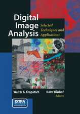 Digital Image Analysis: Selected Techniques and Applications