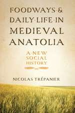 Foodways and Daily Life in Medieval Anatolia:  A New Social History