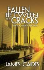 Fallen Between the Cracks:  (This Is a Work of Fiction)