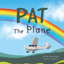Pat the Plane