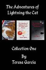 The Adventures of Lightning the Cat