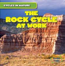The Rock Cycle at Work