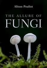 Allure of Fungi