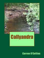 Callyandra