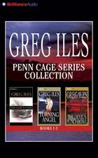 Penn Cage Series Collection:  The Quiet Game, Turning Angel, the Devil's Punchbowl