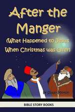 After the Manger (What Happened to Jesus When Christmas Was Over)
