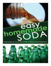 Easy Homemade Soda