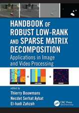 Handbook of Robust Low-Rank and Sparse Matrix Decomposition:  Applications in Image and Video Processing