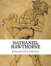 Nathaniel Hawthorne, Collection Novels