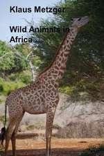Wild Animals in Africa