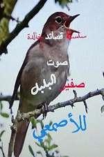 Qasidat Sawt Safir Al Bulbul Lil Asma'i