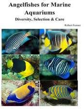 Angelfishes for Marine Aquariums