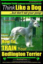 Bedlington Terrier, Bedlington Terrier Training AAA Akc