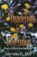 Dandelions in December